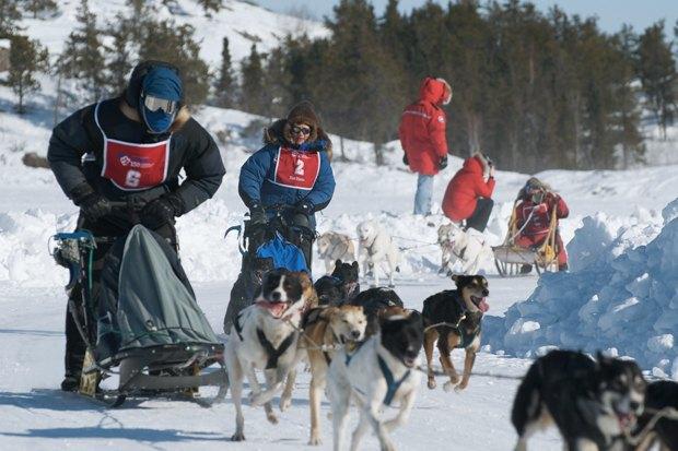 Как утепляются жители Канады, Швеции, Норвегии и Гренландии. Изображение № 4.