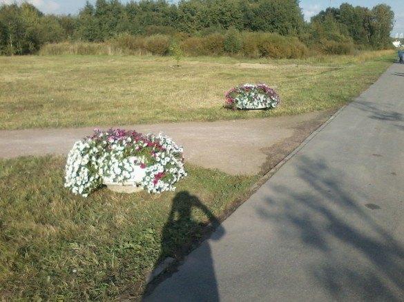 Клумбы искамейки изнового парка вКупчине уехали вслед заПолтавченко. Изображение № 1.