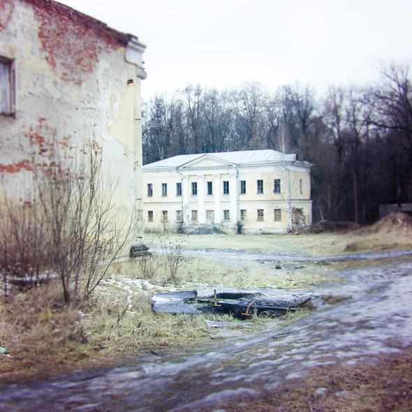 В зоне риска: Усадьба Гребнево. Изображение № 25.