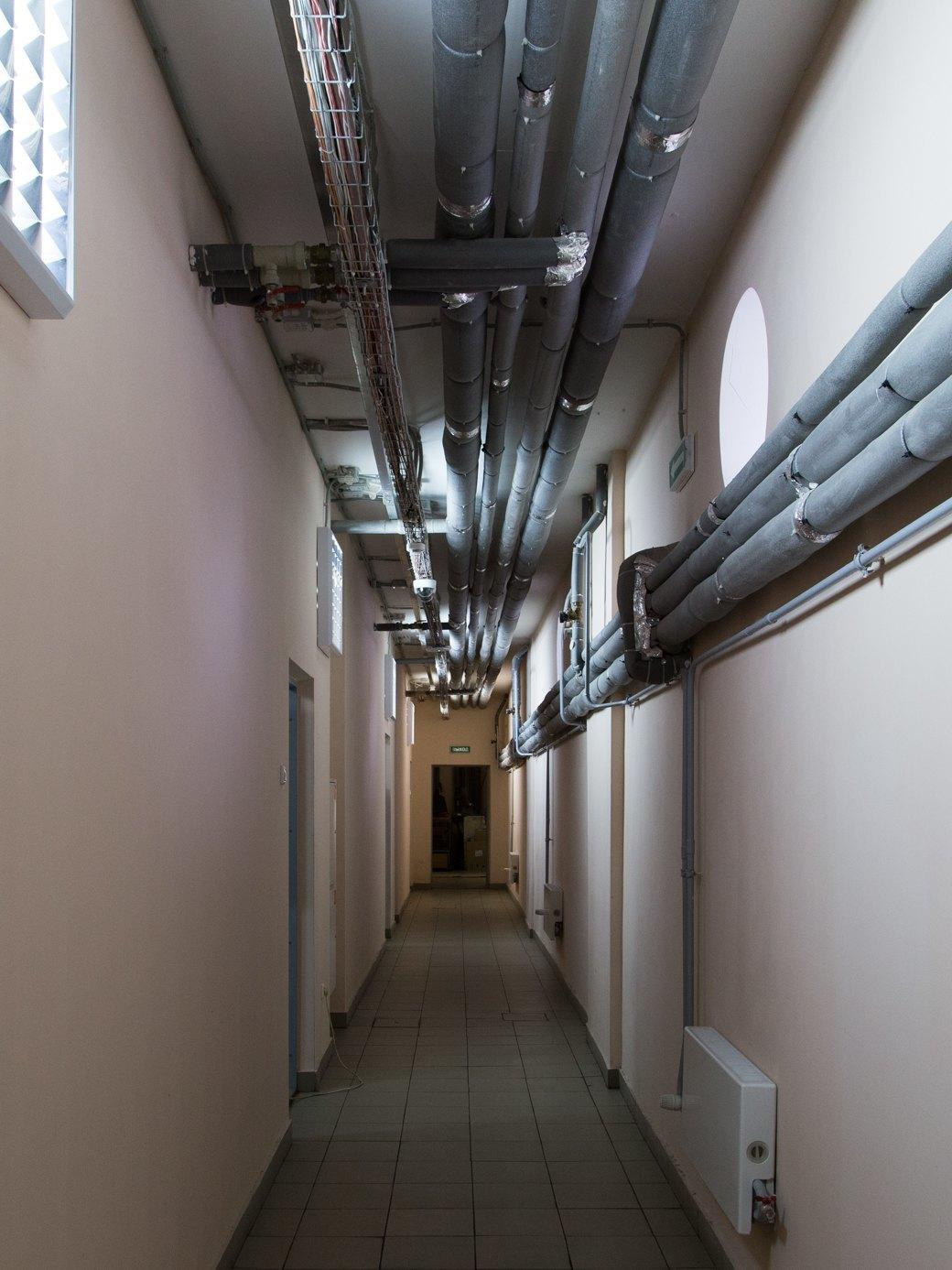 Я живу в доме-коммуне наулице Орджоникидзе. Изображение № 23.