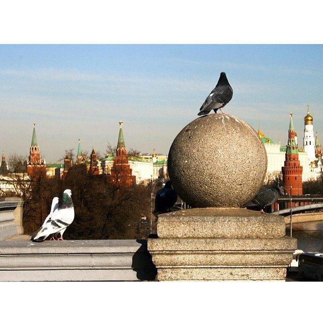 Весна в Москве в снимках Instagram. Изображение № 11.