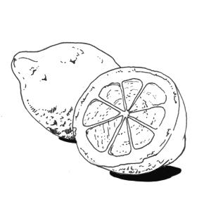 Свекольные блины с гусиным паштетом и джемом из тыквы и облепихи. Изображение № 7.