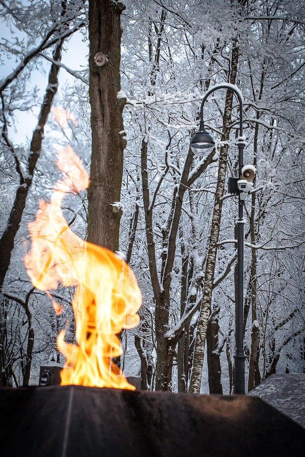 Фонари в парке Красного Села. Изображение № 1.