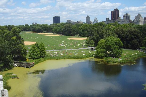 Интервью: Директор Центрального парка Нью-Йоркао привлечении инвестиций, площадке и «Зарядье». Изображение № 36.