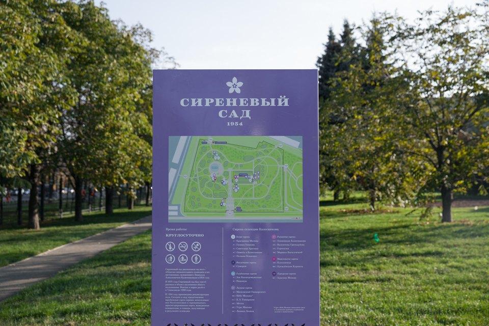 Обновлённый Сиреневый сад наЩёлковском шоссе. Изображение № 6.