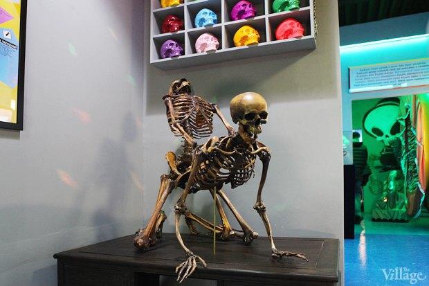 Открытие музея смерти в Москве. Изображение № 2.