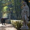 Выставку работ Франко Фонтаны покажут в «Росфото». Изображение № 2.