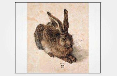 Набор с рисунками Дюрера. Изображение № 4.