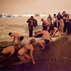 Полное погружение: Крещенское купание в Москве. Изображение № 30.
