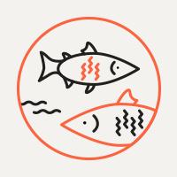 Откуда доставляют рыбу в российскиемагазины. Изображение № 3.