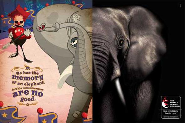 Социальная реклама бразильского агентства Longplay «У него память слона, но плохие воспоминания». Изображение № 4.