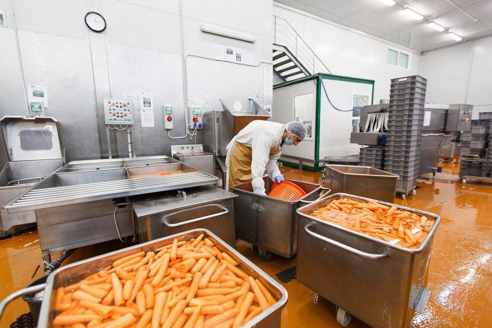 Производственный процесс: Как делают салаты для McDonald's. Изображение № 25.