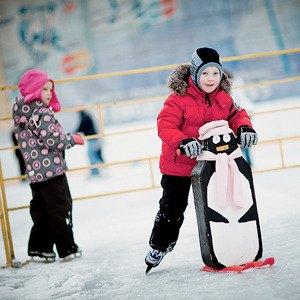 Лёд тронулся: Открытые катки в Петербурге . Изображение № 10.
