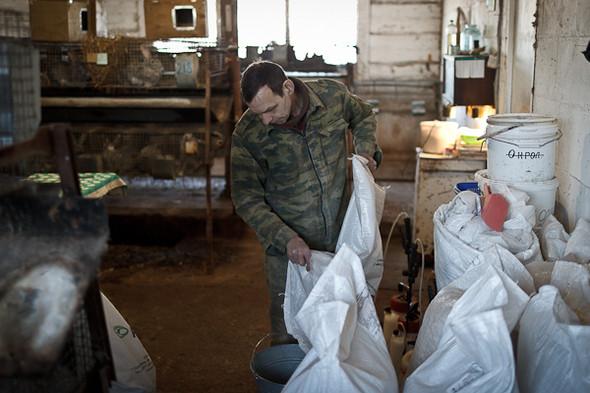 Народное хозяйство: 5 ферм, продукты которых можно купить в Петербурге. Изображение № 57.
