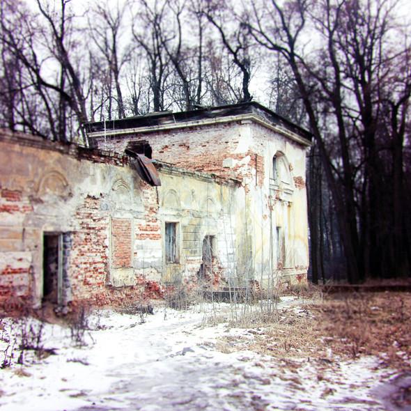 В зоне риска: Усадьба Гребнево. Изображение № 4.