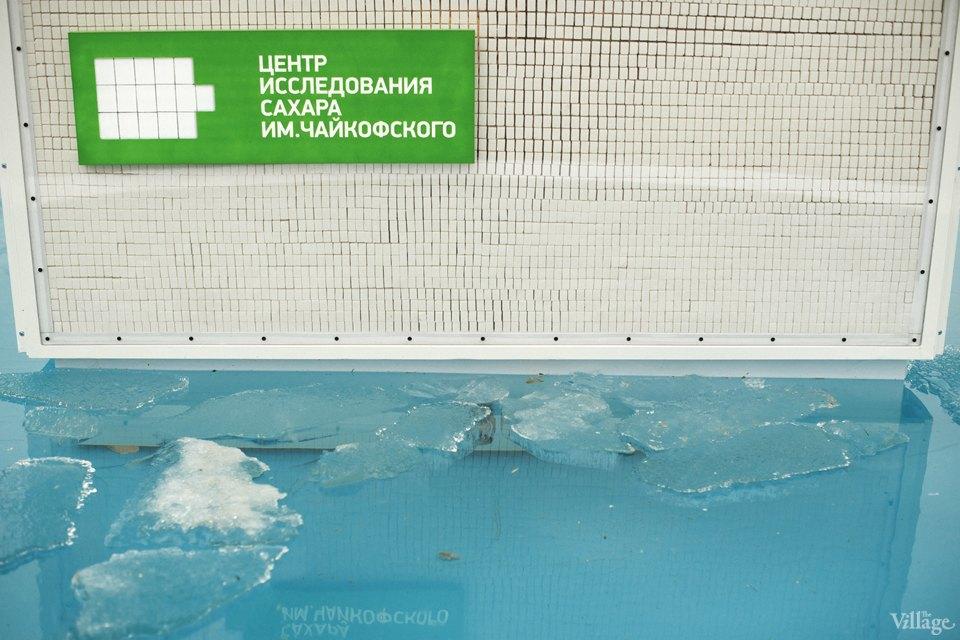 Фоторепортаж: Преобразователь сахарной энергии впаркеГорького. Изображение № 7.