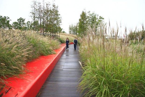 Идеи для города: Парк на месте свалки вТяньцзине. Изображение № 18.