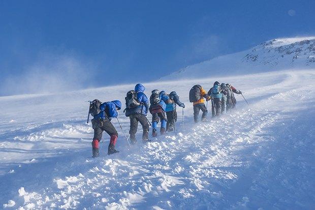 Фото: Shutterstock.com. Изображение № 3.