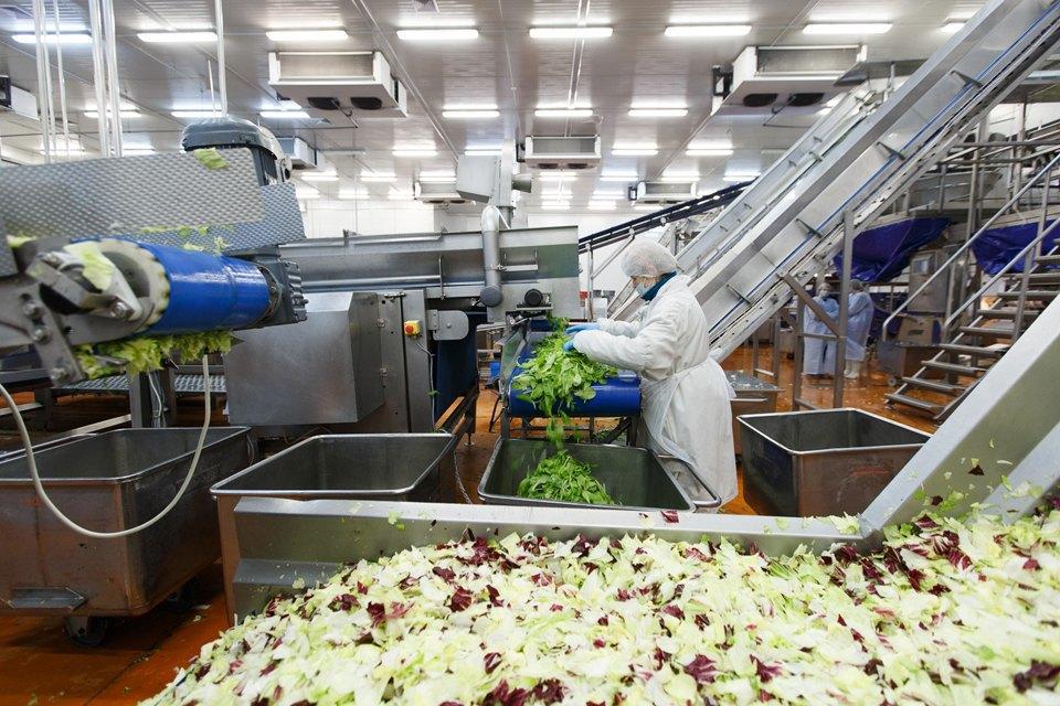 Производственный процесс: Как делают салаты для McDonald's. Изображение № 19.