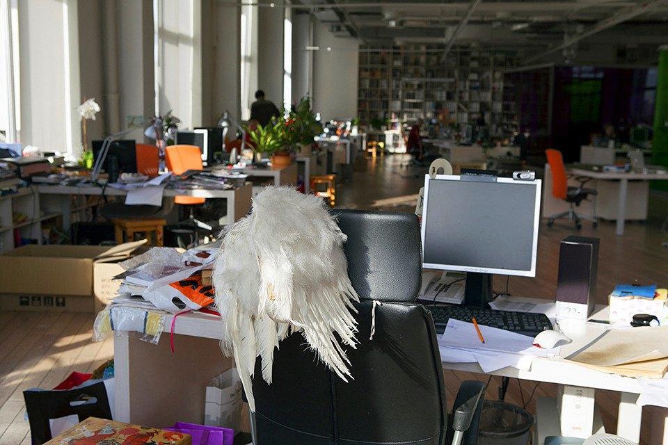 Крылья в подарок генеральному директору Наталье Степанюк. Изображение № 14.