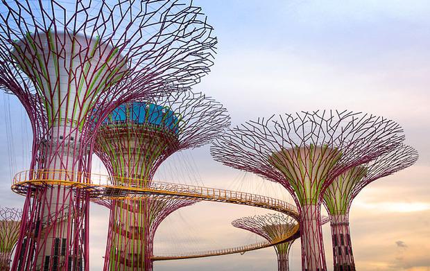 Дизайн от природы: Дом-лотос и супердеревья в Сингапуре. Изображение № 34.