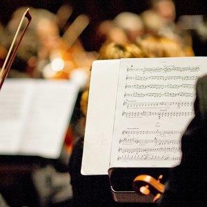 Планы на весну: 35 концертов. Изображение № 8.
