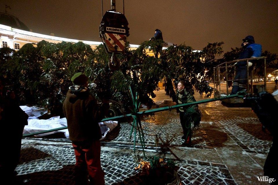 Фоторепортаж: Как устанавливали главную петербургскую ёлку. Изображение № 22.
