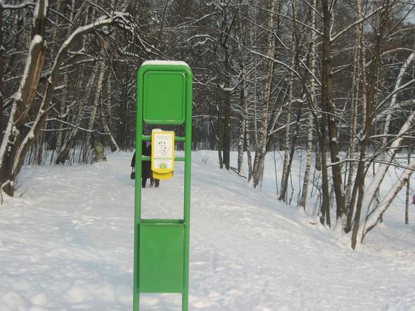 Московские власти взялись за «собачьи туалеты». Изображение № 3.