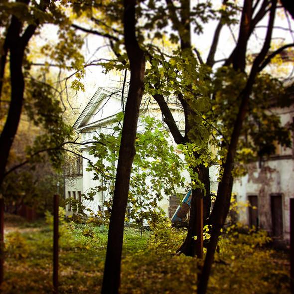 В зоне риска: Египетский павильон и Померанцева оранжерея в Кузьминках. Изображение № 13.