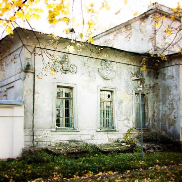 В зоне риска: Египетский павильон и Померанцева оранжерея в Кузьминках. Изображение № 8.