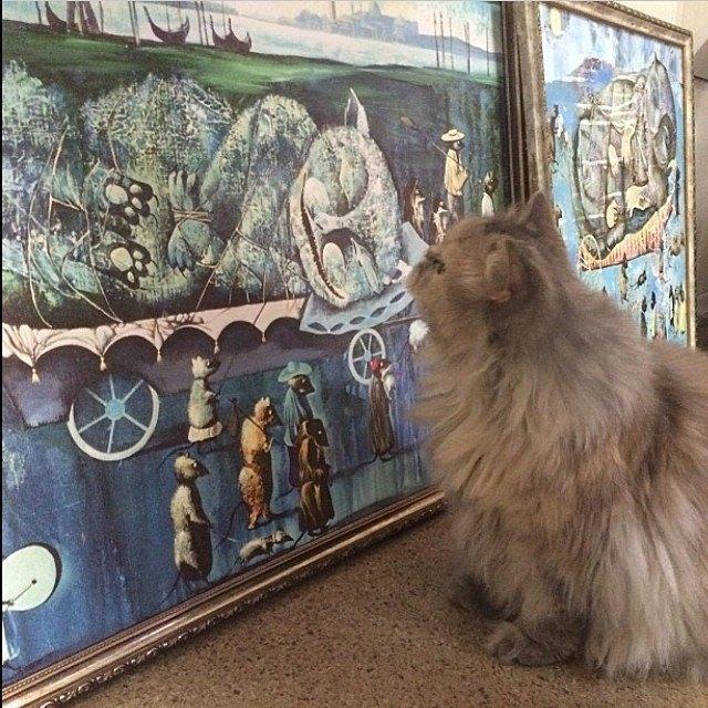 Музейные коты вснимках Instagram. Изображение № 5.