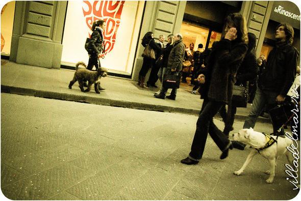 Изображение 18. Репортаж из живой Флоренции.. Изображение № 18.