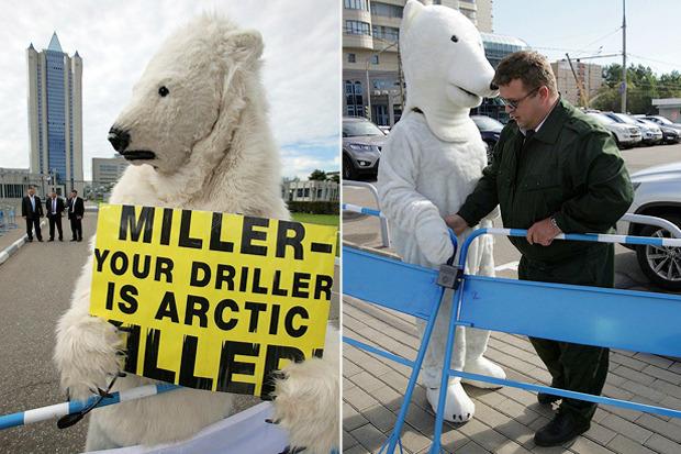Белые медведи блокировали здание «Газпрома». Изображение № 5.