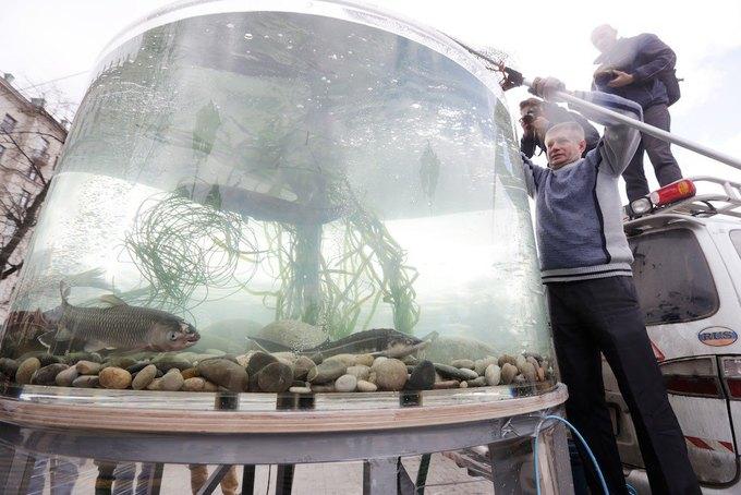 Двухметровый аквариум вНовопушкинском сквере. Изображение № 1.