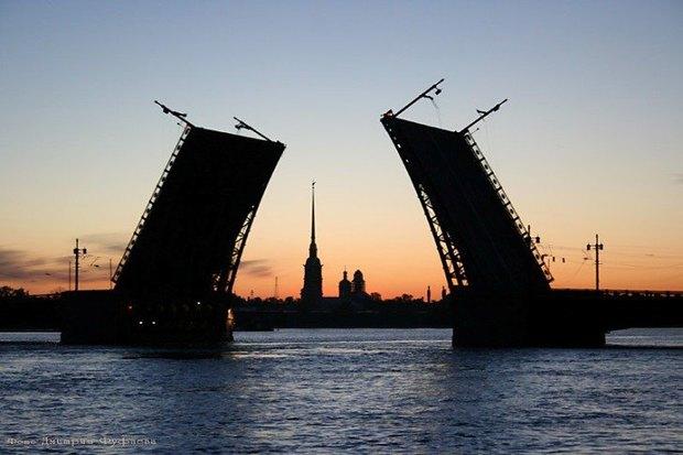 Оплата метро банковскими картами, новый вантовый мост через Неву и судьба детёныша крокодила . Изображение № 4.