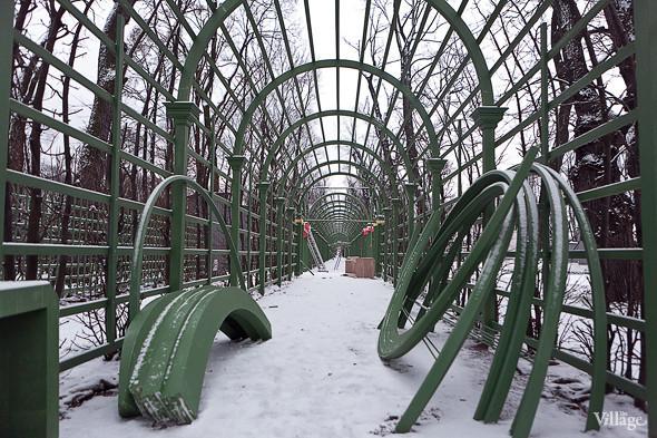 Фоторепортаж: Летний сад после реставрации. Изображение № 11.