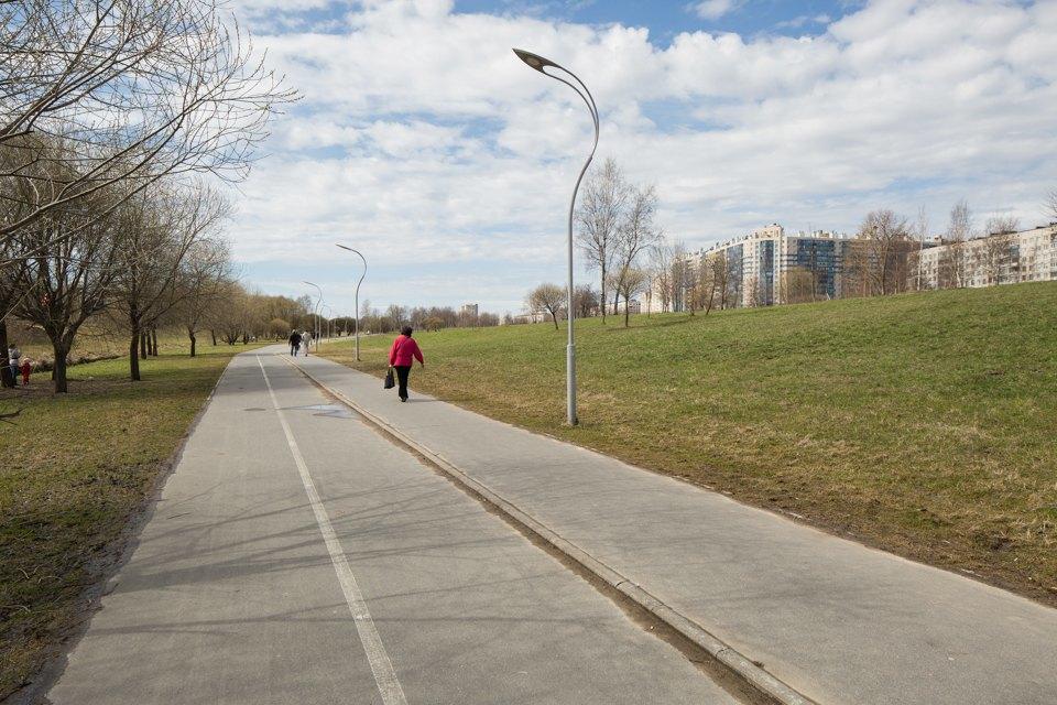 Анна Нова — отом, как спорт исовременное искусство спасли Муринский парк. Изображение № 2.
