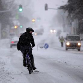 Снегопад в Веллингтоне. Изображение № 27.