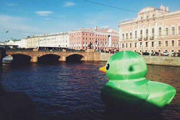 По Фонтанке плавает гигантская зелёная утка. Изображение № 1.