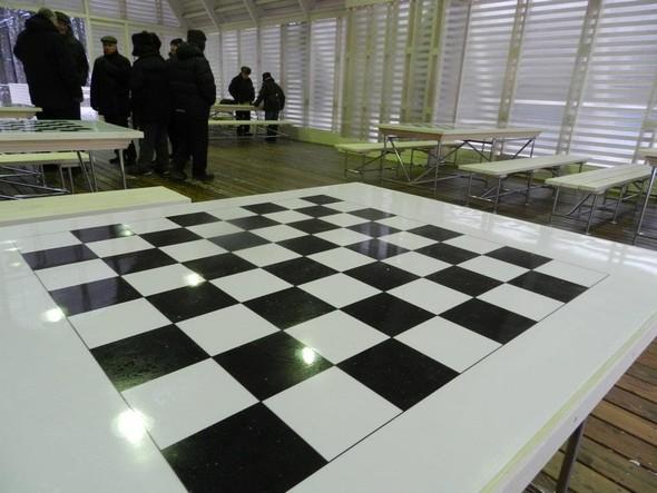 В Нескучном саду открылся шахматный клуб «Белая ладья». Изображение № 6.