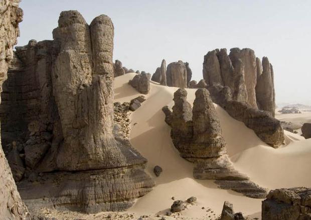 Дизайн от природы: Дом-термитник, жилая дюна и оранжереи в пустыне. Изображение № 15.