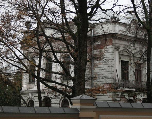 Около Пушкинского музея вырубают старинный парк. Изображение № 8.