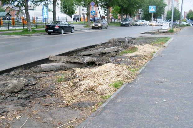 Как горожане борются с плохими дорогами России. Изображение № 25.