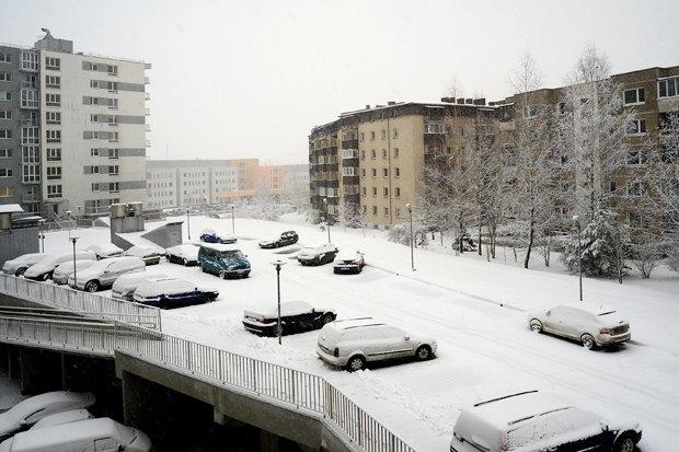Вильнюс, Литва. Фото: Bokstaz / Shutterstock.com. Изображение № 6.