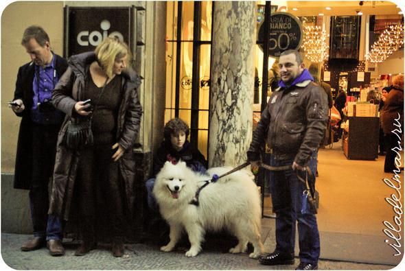 Изображение 2. Репортаж из живой Флоренции.. Изображение № 2.