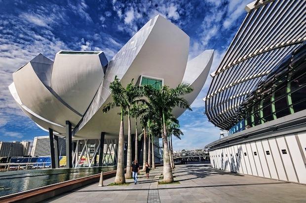 Дизайн от природы: Дом-лотос и супердеревья в Сингапуре. Изображение № 17.