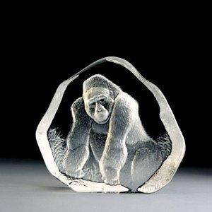 События недели: Icons, PetroJazz, говорящая горилла ицветение азалий вБотаническом. Изображение № 3.