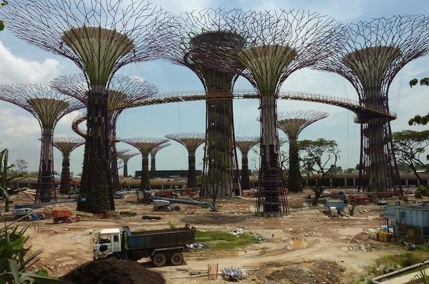 Дизайн от природы: Дом-лотос и супердеревья в Сингапуре. Изображение № 27.