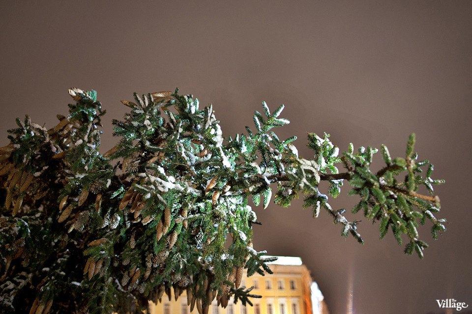Фоторепортаж: Как устанавливали главную петербургскую ёлку. Изображение № 2.