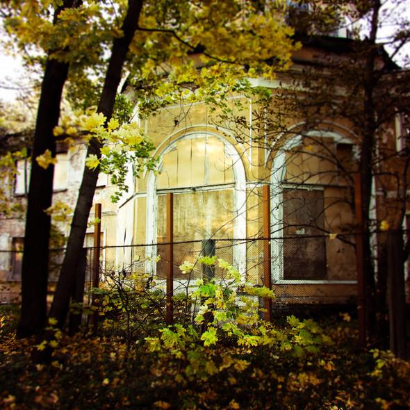 В зоне риска: Египетский павильон и Померанцева оранжерея в Кузьминках. Изображение № 20.